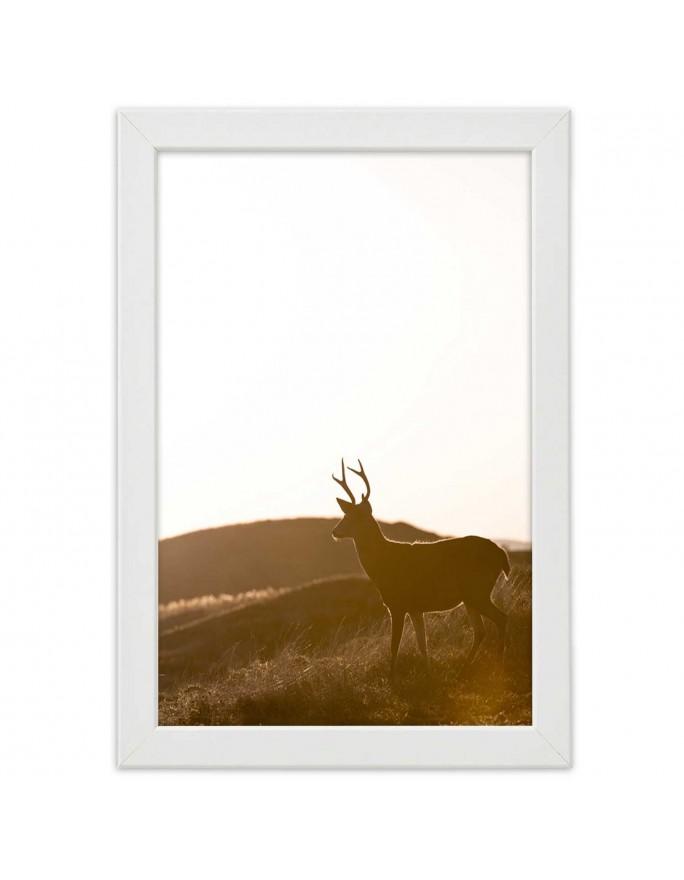 Złoty Budda 3 , Obraz na płótnie - Canvas