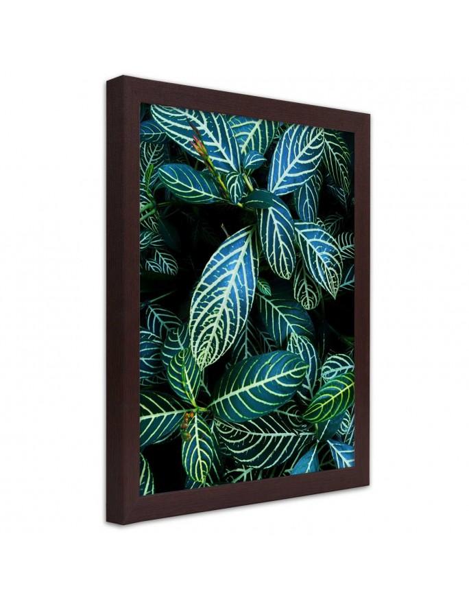 Bambus 3, Obraz na płótnie - Canvas