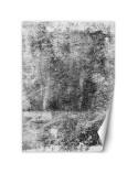 Maki, Parawan pokojowy na płótnie - Canvas