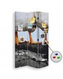 City rainbow, Parawan pokojowy na płótnie - Canvas